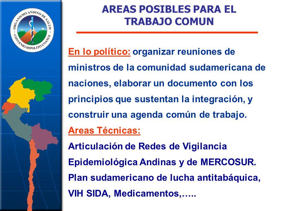 AREAS POSIBLES PARA EL TRABAJO COMUN
