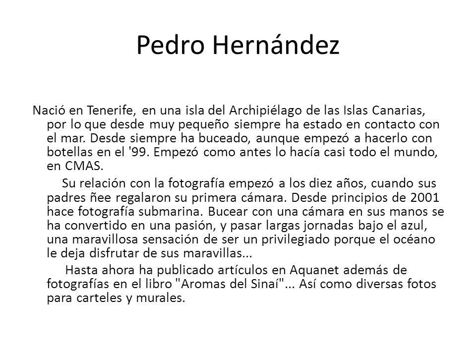 Pedro Hernández