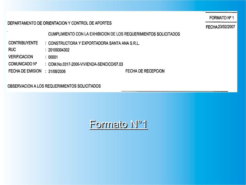 Formato N°1
