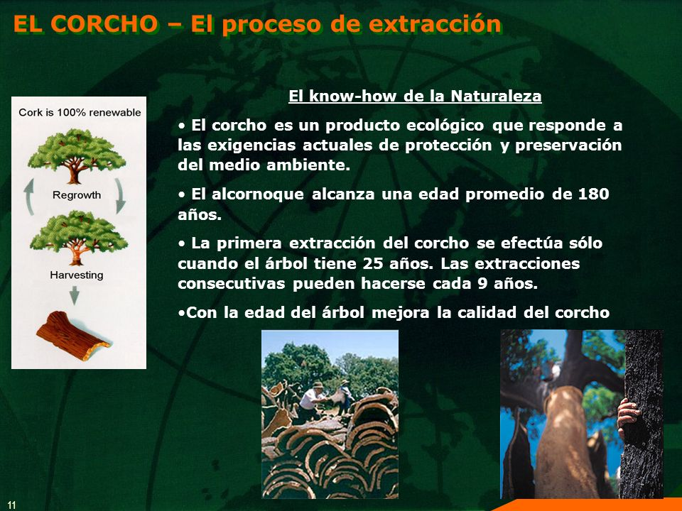 El know-how de la Naturaleza