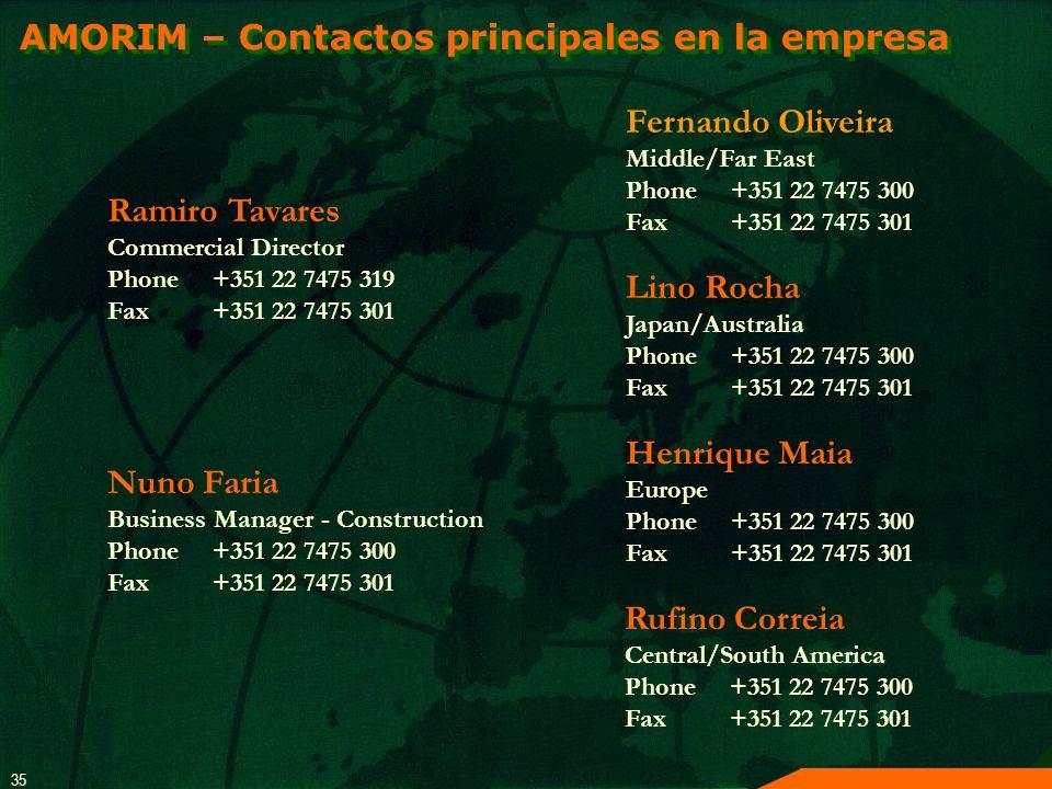 AMORIM – Contactos principales en la empresa