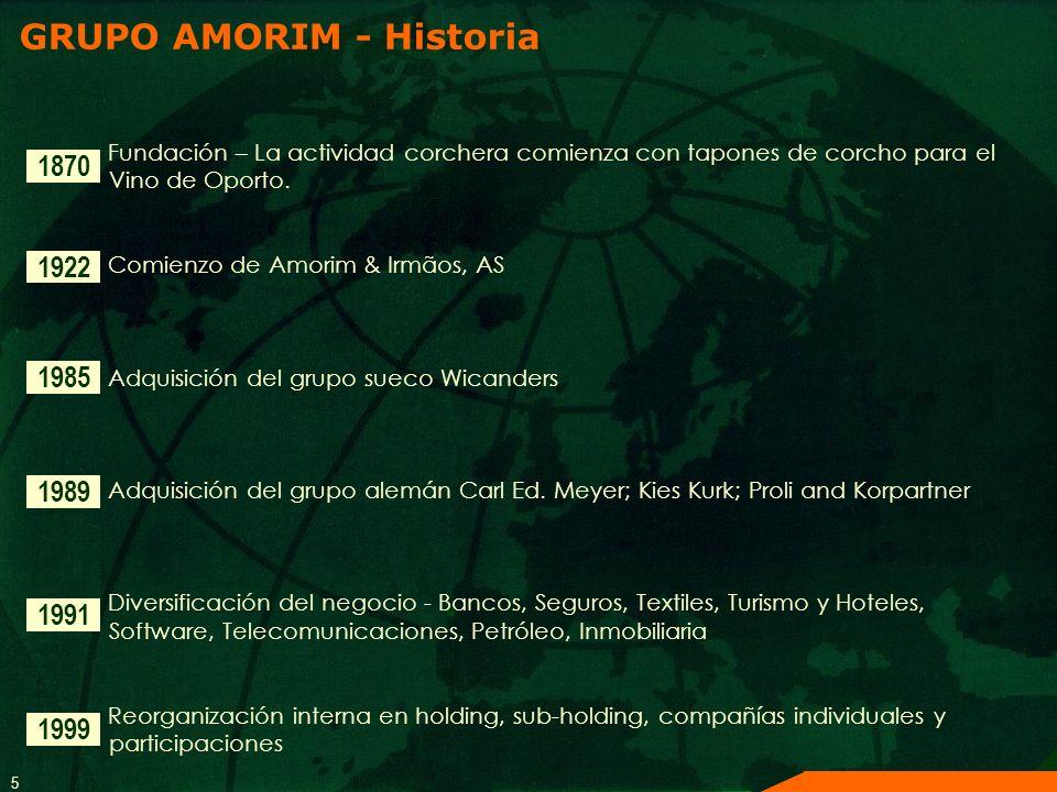 GRUPO AMORIM - Historia