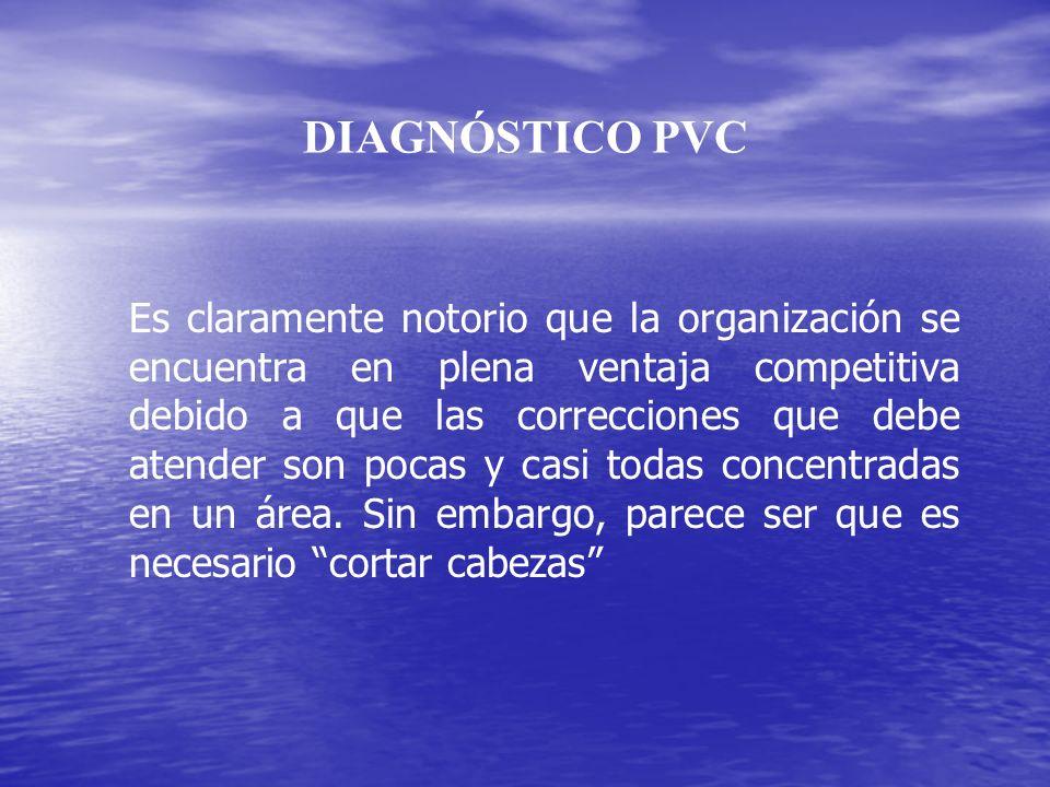 DIAGNÓSTICO PVC
