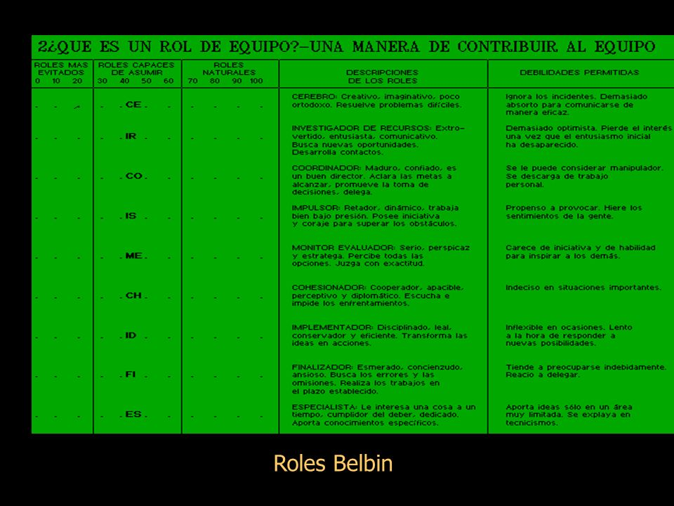 Roles Belbin