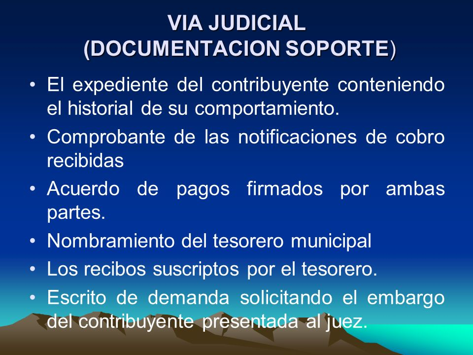 VIA JUDICIAL (DOCUMENTACION SOPORTE)