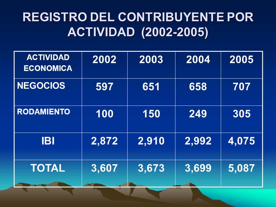 REGISTRO DEL CONTRIBUYENTE POR ACTIVIDAD (2002-2005)