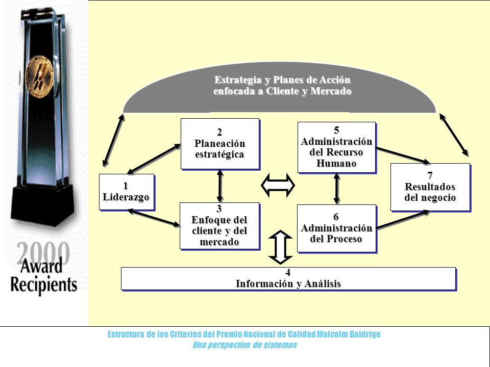 Estrategia y Planes de Acción enfocada a Cliente y Mercado 2 5