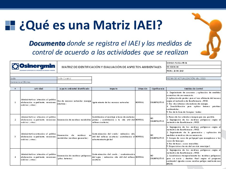 ¿Qué es una Matriz IAEI.