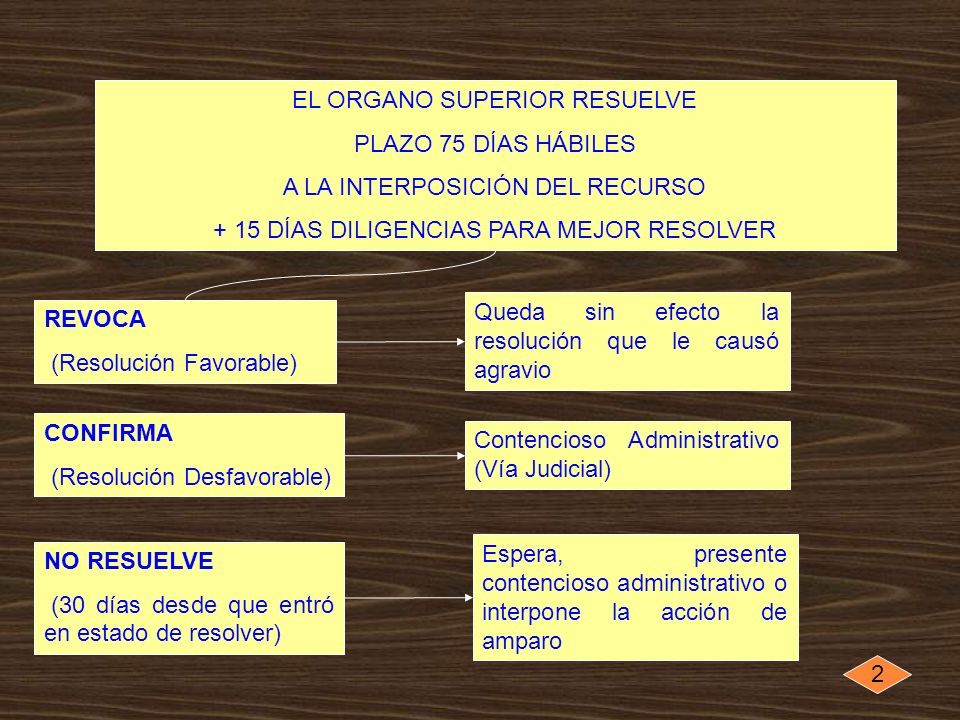 EL ORGANO SUPERIOR RESUELVE PLAZO 75 DÍAS HÁBILES