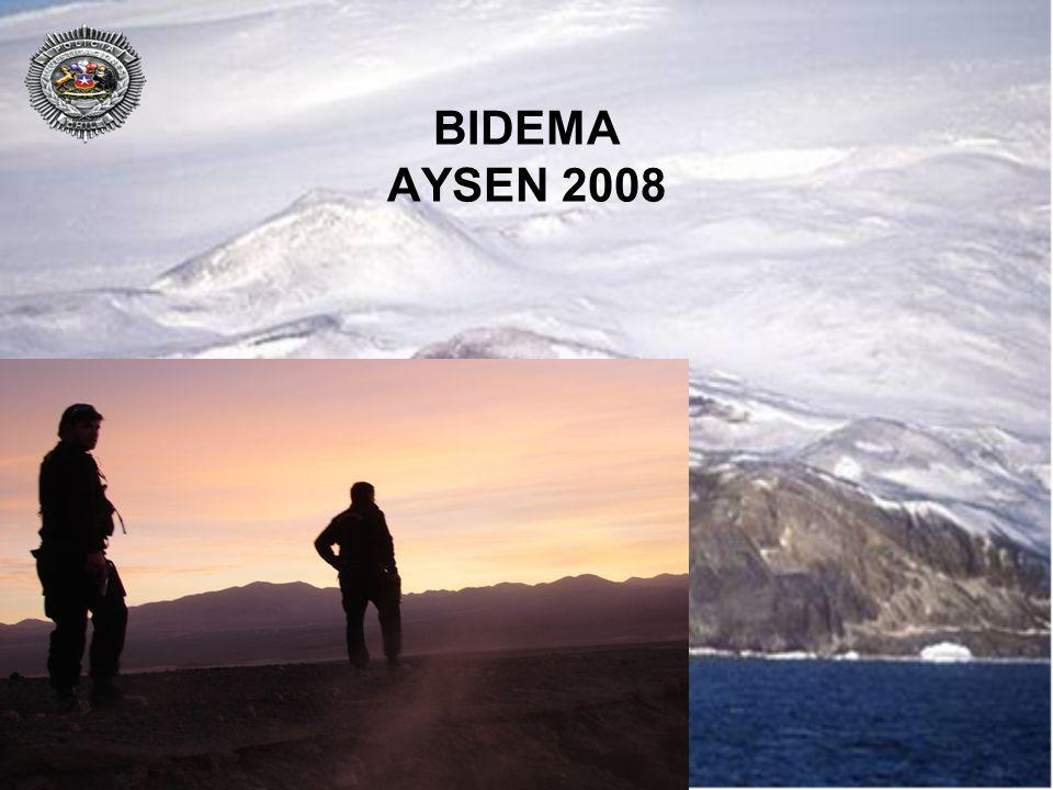 BIDEMA AYSEN 2008