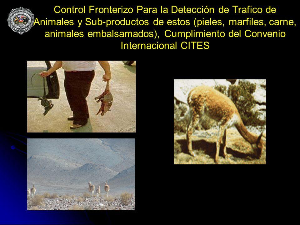 Control Fronterizo Para la Detección de Trafico de Animales y Sub-productos de estos (pieles, marfiles, carne, animales embalsamados), Cumplimiento del Convenio Internacional CITES