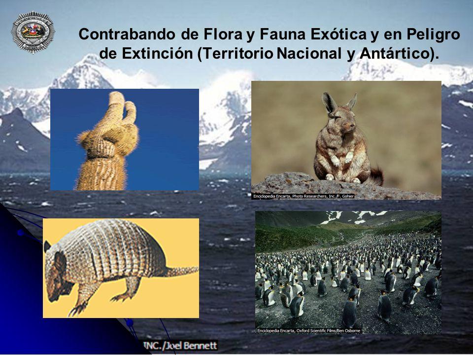 Contrabando de Flora y Fauna Exótica y en Peligro de Extinción (Territorio Nacional y Antártico).