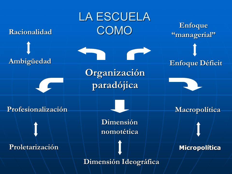 Organización paradójica Dimensión Ideográfica