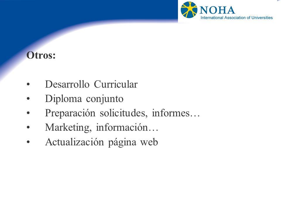 Otros: Desarrollo Curricular. Diploma conjunto. Preparación solicitudes, informes… Marketing, información…