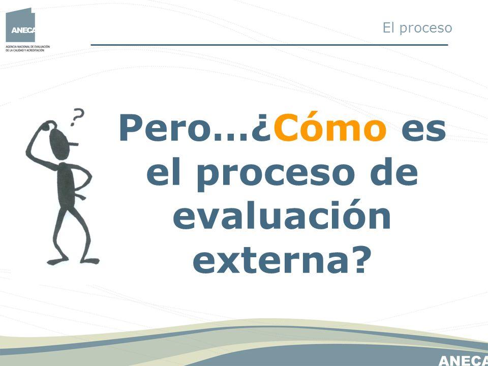 Pero…¿Cómo es el proceso de evaluación externa