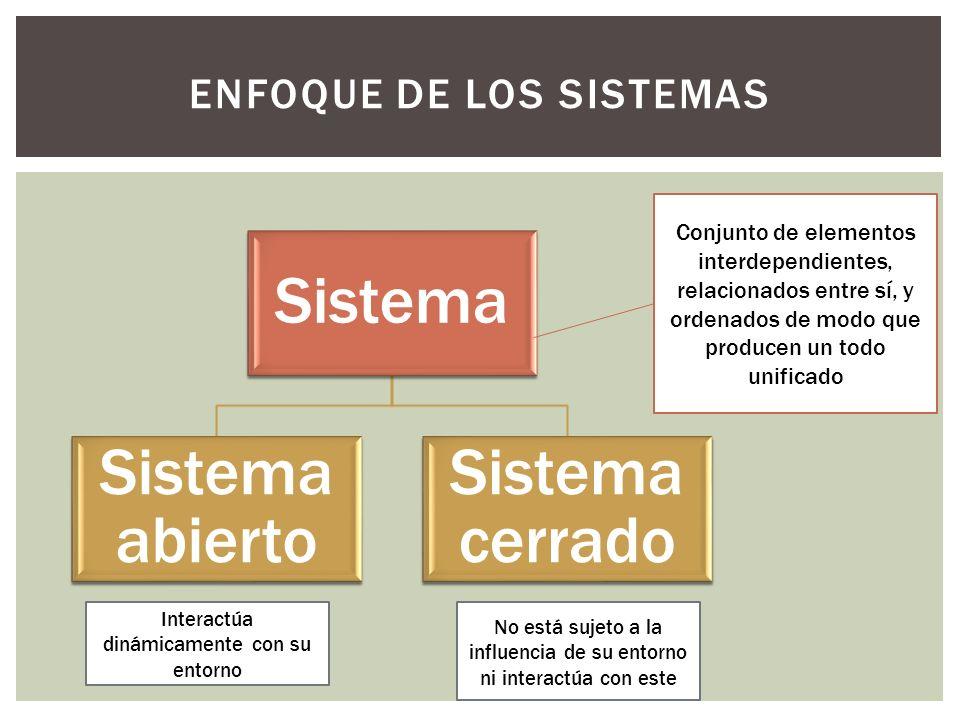 Enfoque de los sistemas