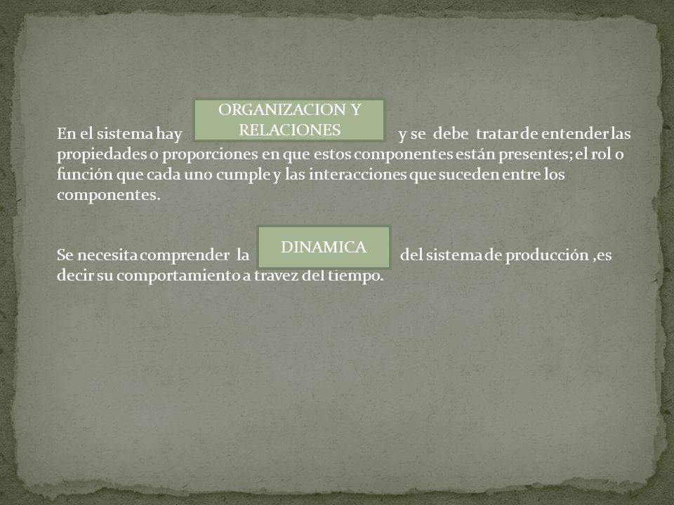 ORGANIZACION Y RELACIONES