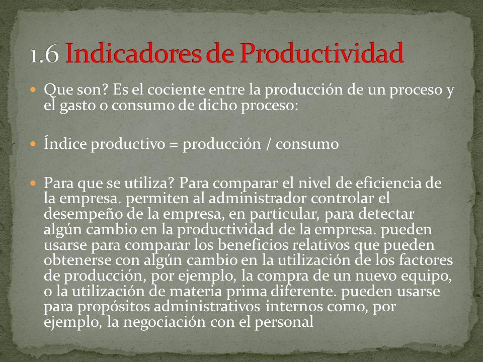 1.6 Indicadores de Productividad