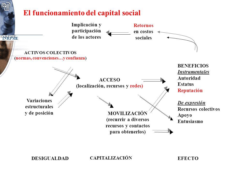 El funcionamiento del capital social