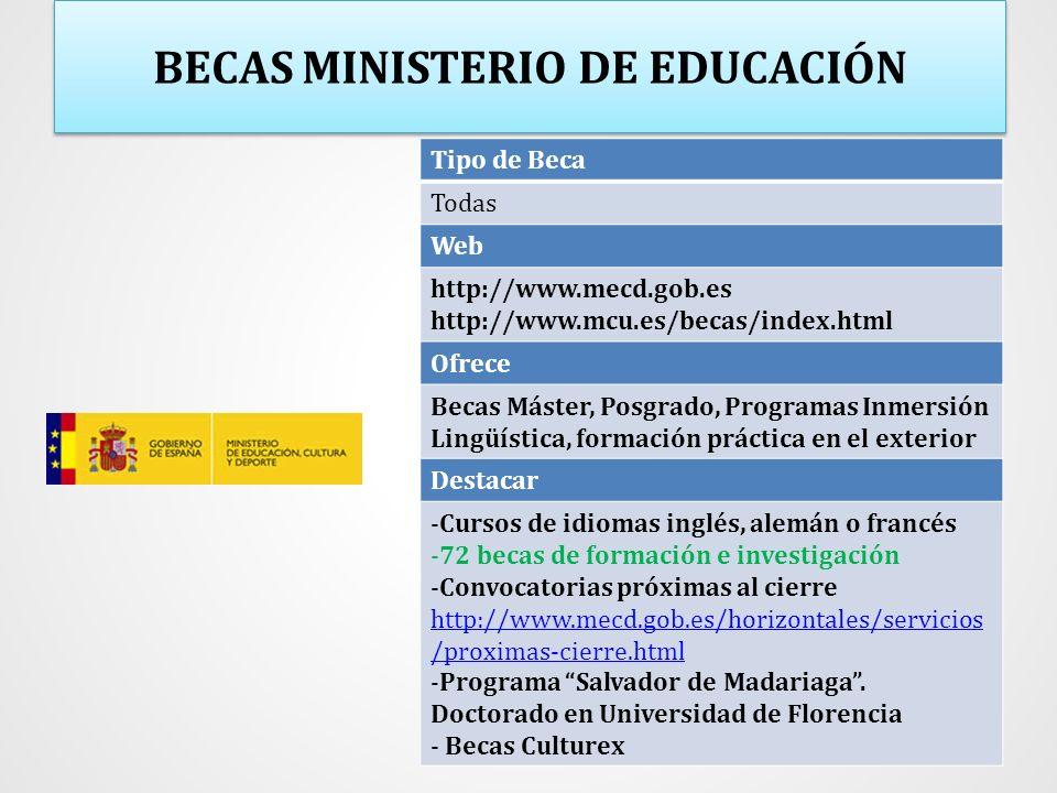 BECAS MINISTERIO DE EDUCACIÓN