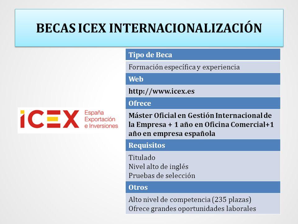 BECAS ICEX INTERNACIONALIZACIÓN