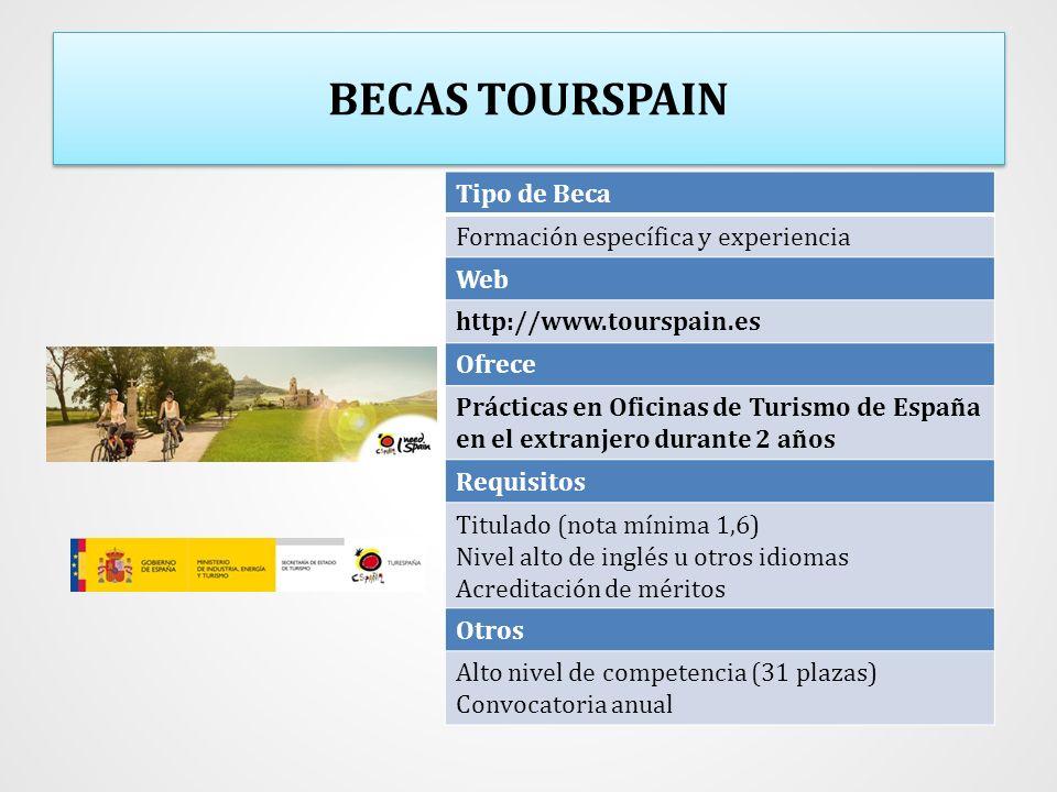 BECAS TOURSPAIN Tipo de Beca Formación específica y experiencia Web
