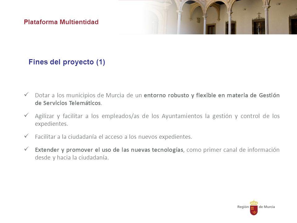 Fines del proyecto (1) Plataforma Multientidad