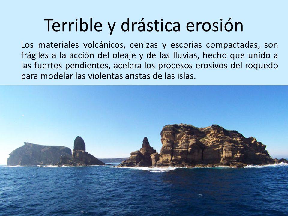 Terrible y drástica erosión
