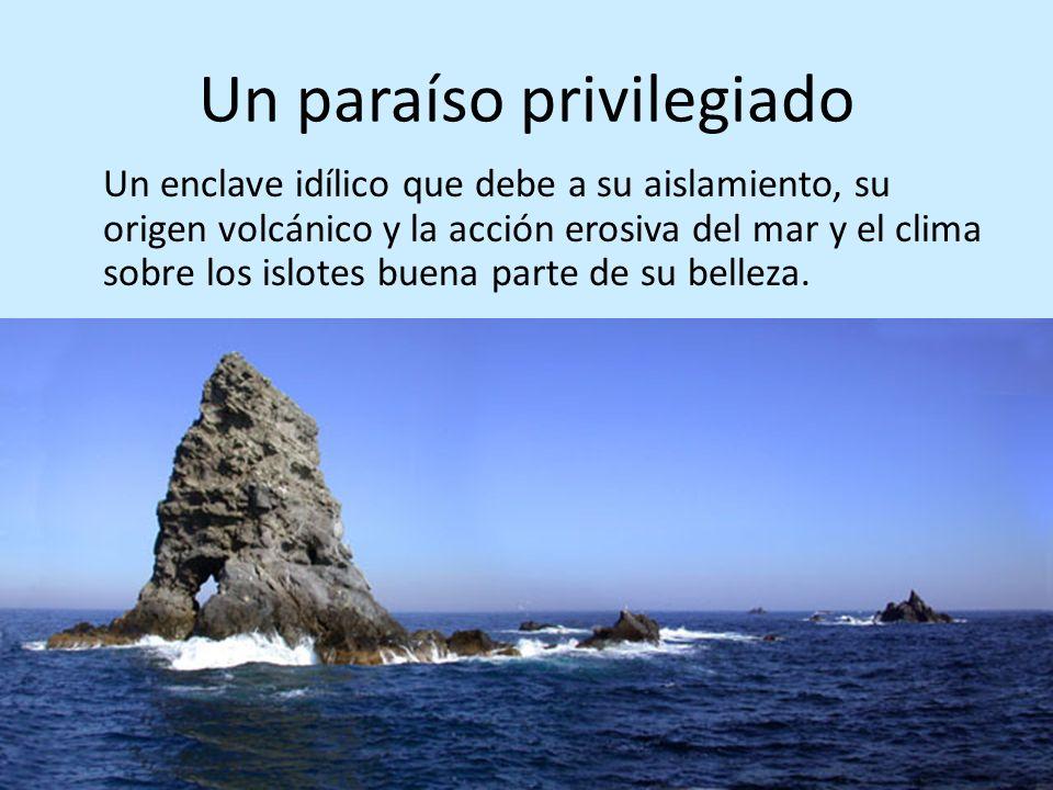 Un paraíso privilegiado