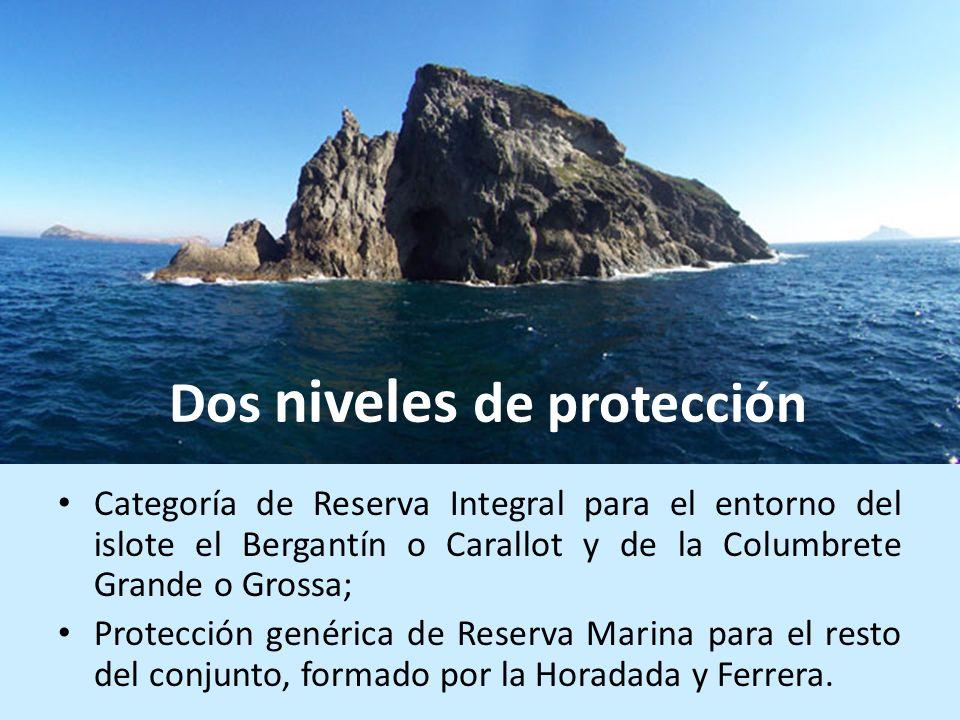 Dos niveles de protección