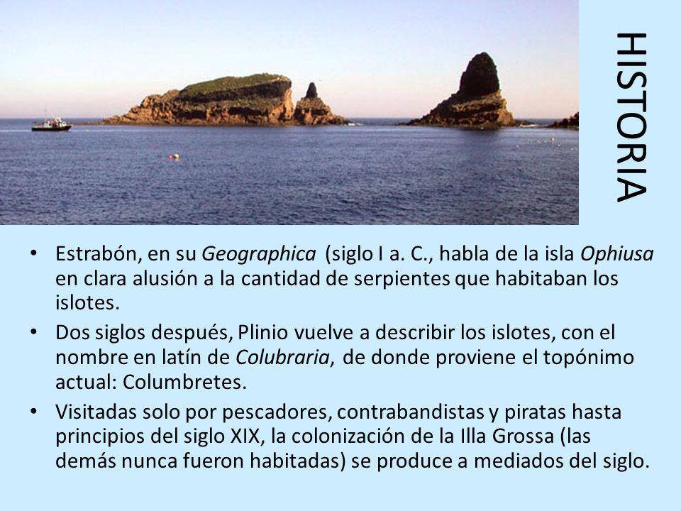 HISTORIAEstrabón, en su Geographica (siglo I a. C., habla de la isla Ophiusa en clara alusión a la cantidad de serpientes que habitaban los islotes.
