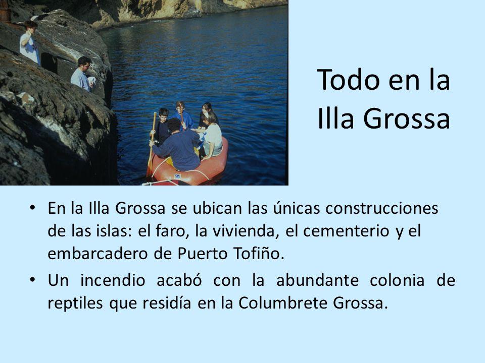Todo en la Illa Grossa