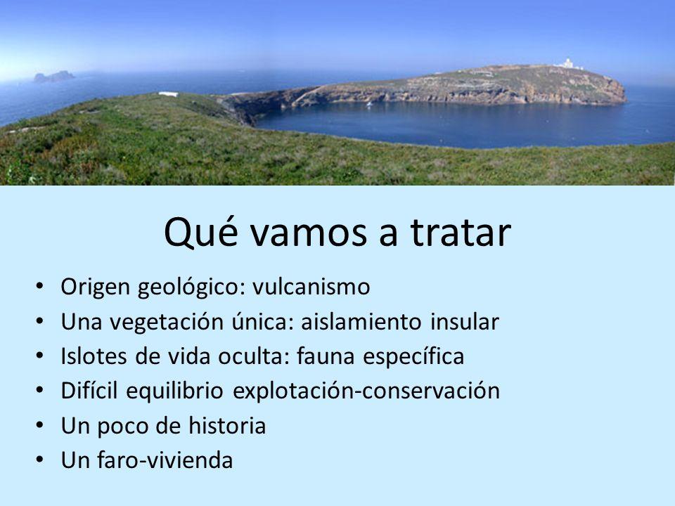 Qué vamos a tratar Origen geológico: vulcanismo