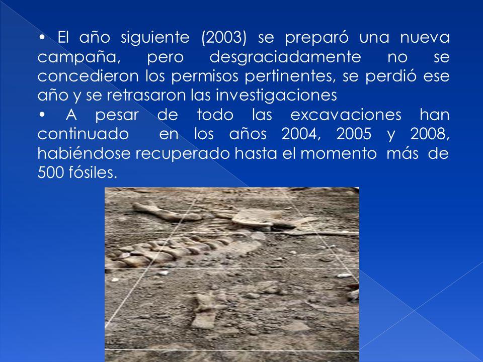 • El año siguiente (2003) se preparó una nueva campaña, pero desgraciadamente no se concedieron los permisos pertinentes, se perdió ese año y se retrasaron las investigaciones