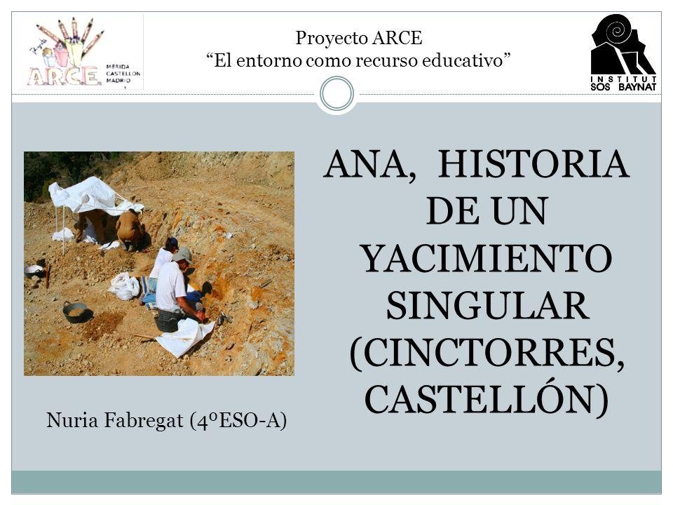 ANA, HISTORIA DE UN YACIMIENTO SINGULAR (CINCTORRES, CASTELLÓN)