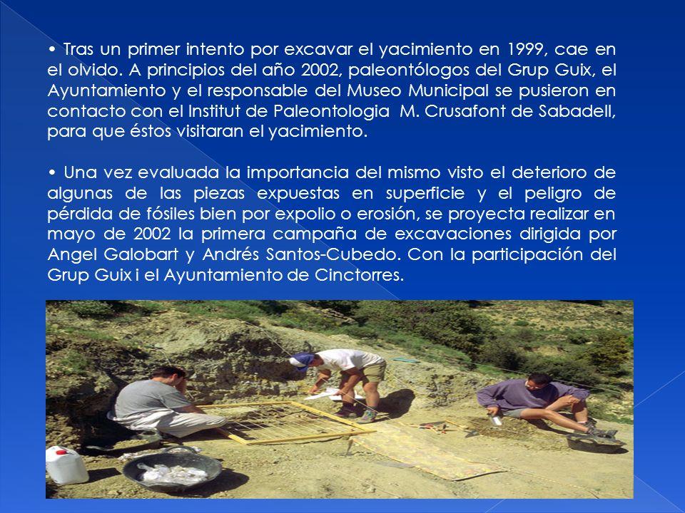• Tras un primer intento por excavar el yacimiento en 1999, cae en el olvido. A principios del año 2002, paleontólogos del Grup Guix, el Ayuntamiento y el responsable del Museo Municipal se pusieron en contacto con el Institut de Paleontologia M. Crusafont de Sabadell, para que éstos visitaran el yacimiento.