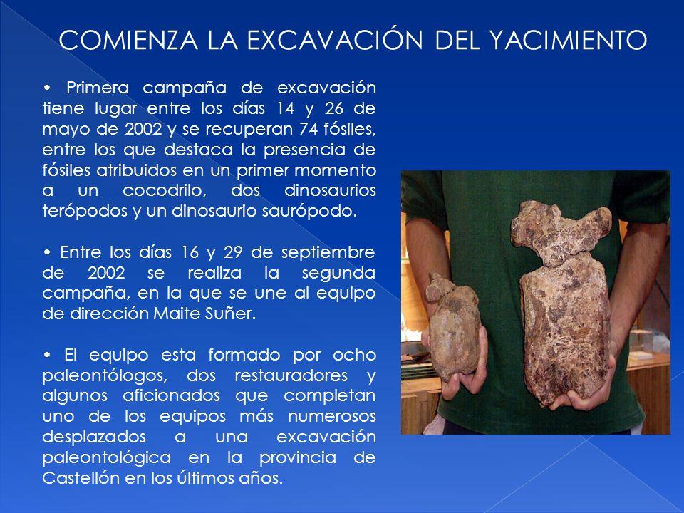 COMIENZA LA EXCAVACIÓN DEL YACIMIENTO