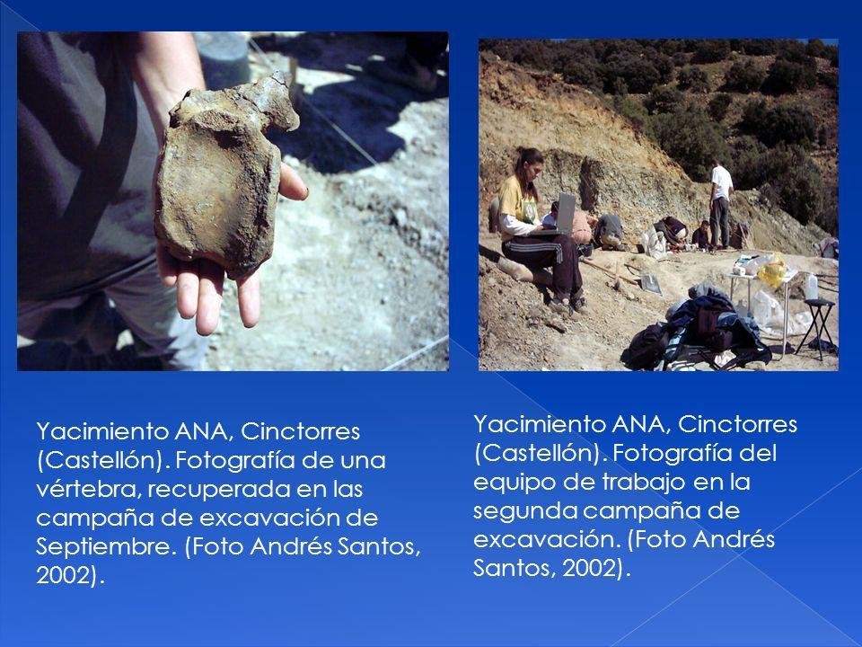 Yacimiento ANA, Cinctorres (Castellón)