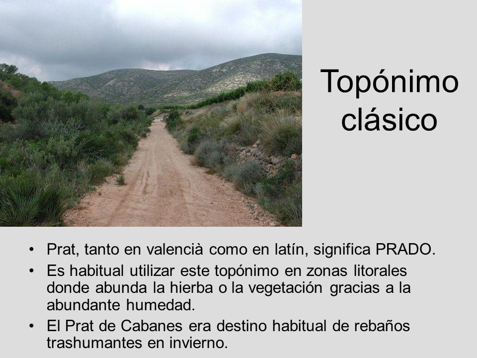 Topónimo clásico Prat, tanto en valencià como en latín, significa PRADO.