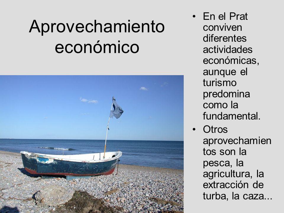 Aprovechamiento económico