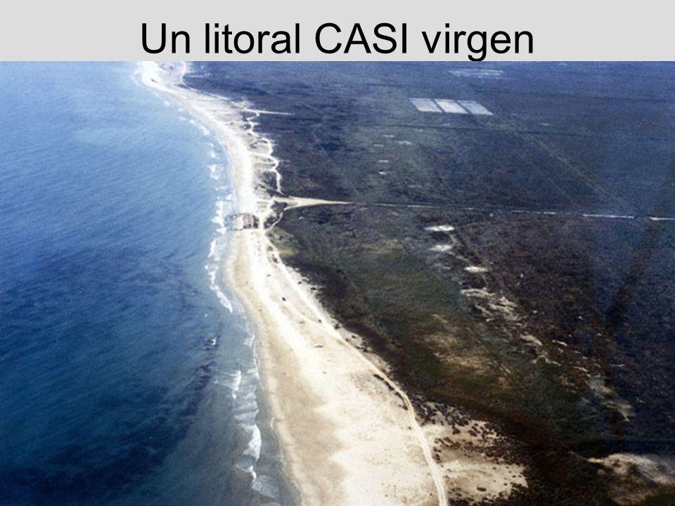 Un litoral CASI virgen