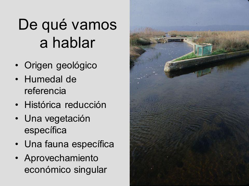 De qué vamos a hablar Origen geológico Humedal de referencia