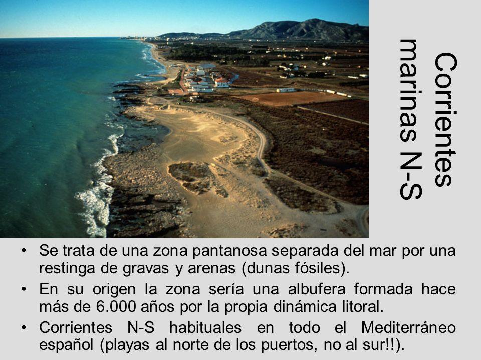 Corrientes marinas N-S