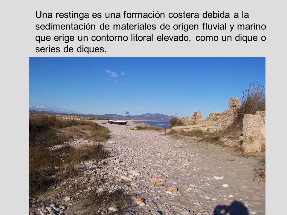 Una restinga es una formación costera debida a la sedimentación de materiales de origen fluvial y marino que erige un contorno litoral elevado, como un dique o series de diques.