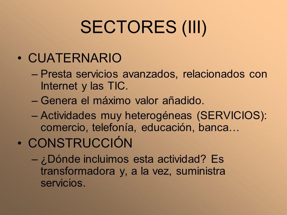 SECTORES (III) CUATERNARIO CONSTRUCCIÓN