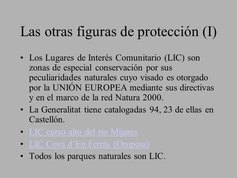 Las otras figuras de protección (I)