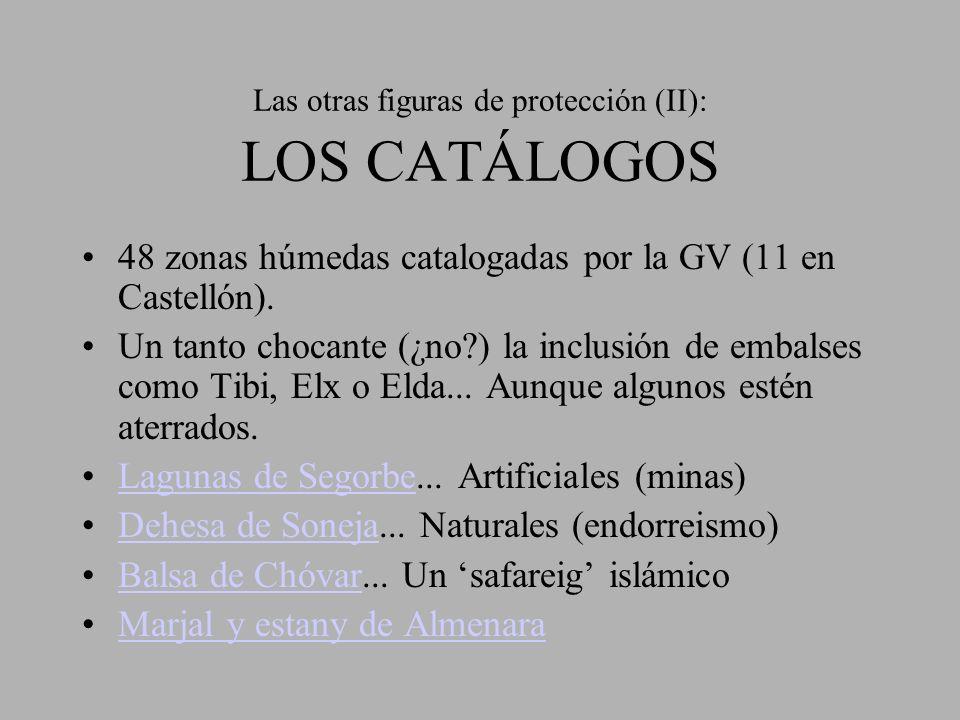 Las otras figuras de protección (II): LOS CATÁLOGOS