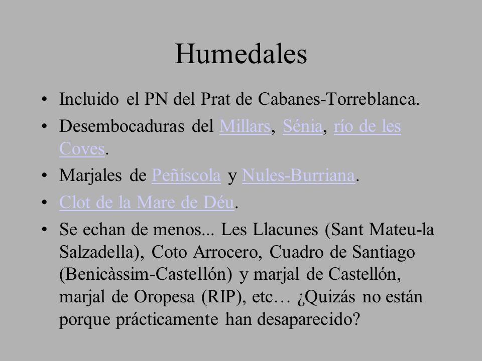 Humedales Incluido el PN del Prat de Cabanes-Torreblanca.