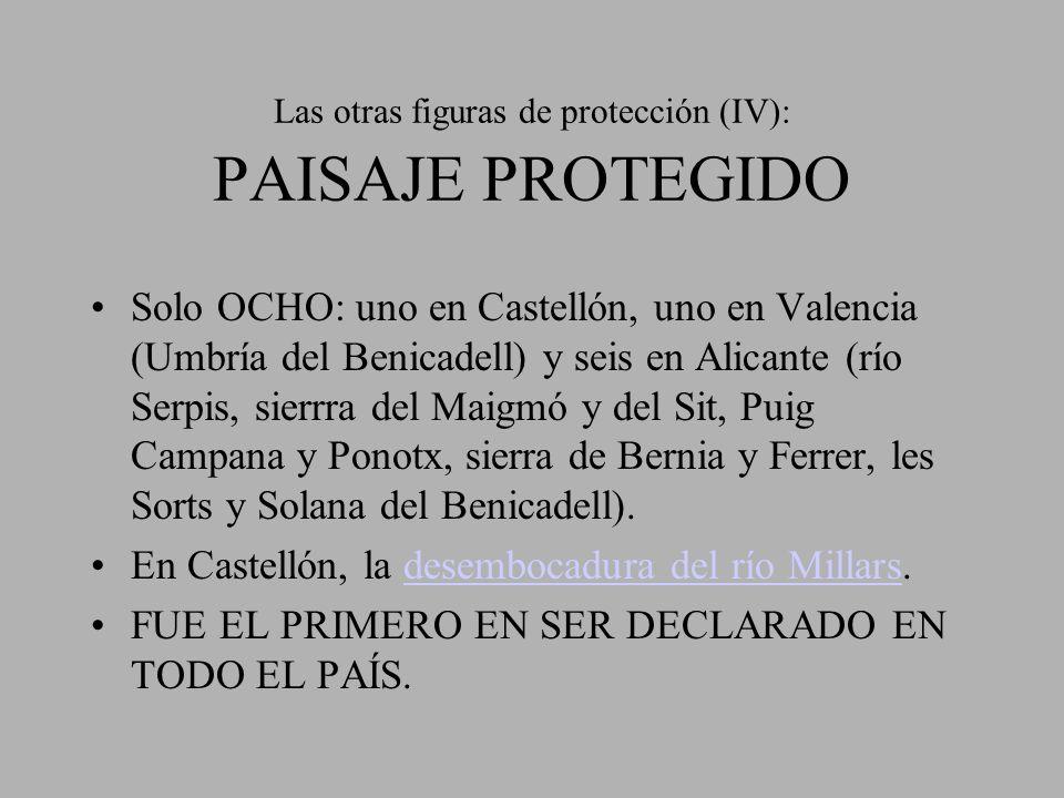 Las otras figuras de protección (IV): PAISAJE PROTEGIDO