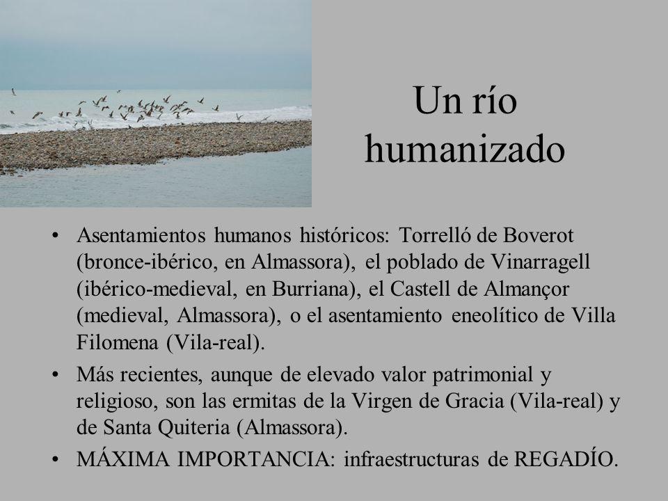 Un río humanizado